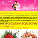 婚庆礼仪公司网站页面