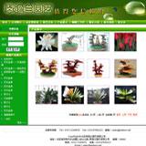 园艺花卉展示缩略图