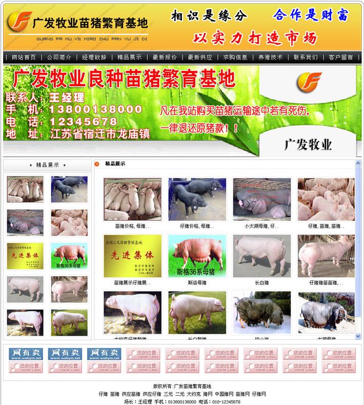 苗猪网站源程序