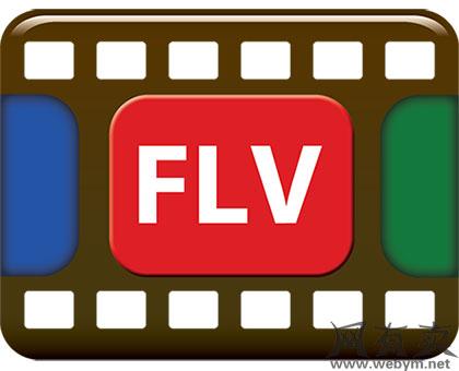 flv格式文件