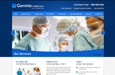 欧美医疗网站模板 蓝色风格 div+css html5