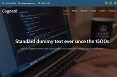 计算机软件工程培训机构网站模板下载