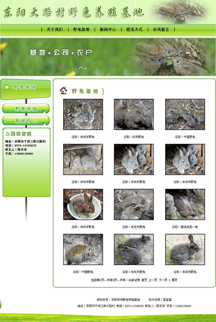 野兔养殖基地网站源程序